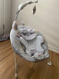 Fisher-Price Deluxe Bouncer for baby