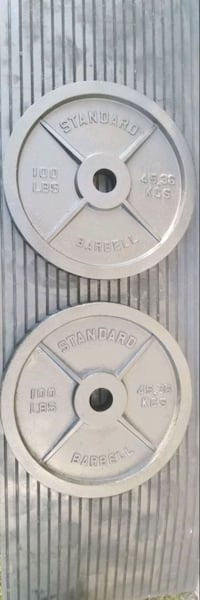 2 Rogue 100 lb olympic weights plates