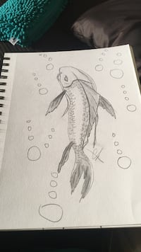 Koi fish pencil sketch