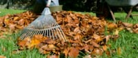 Leaf removal and other yard work Trinity, 27370