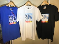 M L XL All size tee  St Catharines, L2S