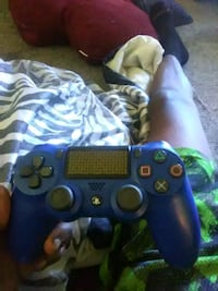 blue Sony PS3 game controller Forest, 24551