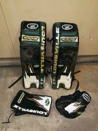 Arena goalie pads and gloves 50$ Edmonton, T6B 1H8