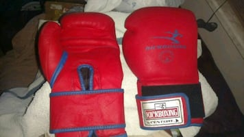 Kickboxing gloves by Century 14 oz.