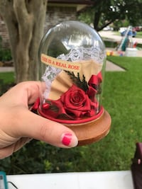 Red Real Rose petal in clear glass
