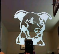 Pitbull etched lighted mirror Westminster, 80234