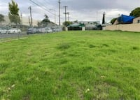 LAND FOR SALE  Los Angeles