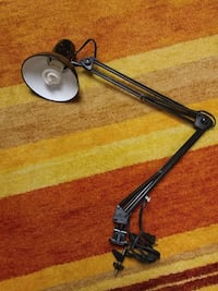 Swing Arm Desk Lamp Silver Spring, 20902