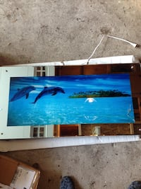 Light up dolphin picture, makes water sounds Barrie, L4N 4E1