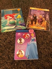 Disney Princess Books Gaithersburg, 20878