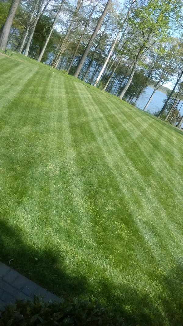 Basic lawn care services