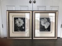 ONLY ONE LEFT! PRICE DROP!!! Home Decor Picture Wall Frames Jessup, 20794