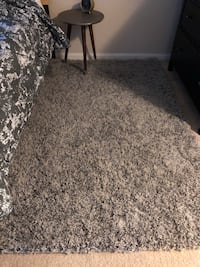Gray shag rug 4x6 Rockville, 20852