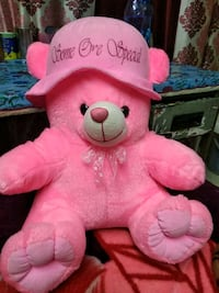 pink and white bear plush toy Chandigarh, 160014