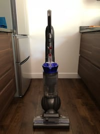Ball Allergy dyson upright vacuum Rockville, 20852
