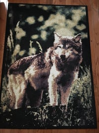 3 x 5 area rug in very good condition Richmond Hill, L3T 7Z3