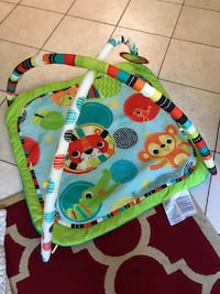 baby's multicolored activity gym Tampa, 33607
