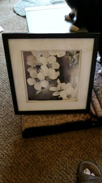 white petaled flower painting with black wooden fr Fresno, 93721