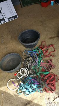 lot of horse related items