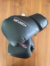 Boxing Gloves 10oz Womens