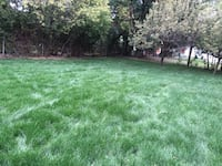 Sod installation reasonable price best job  [PHONE NUMBER HIDDEN] Toronto, M3H 4N2