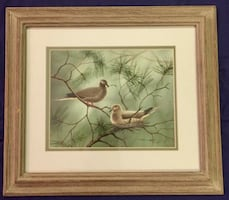 "Original ""Mourning Dove"" Print By D. Nicholson Miller"