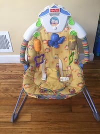 baby's green and blue Fisher-Price bouncer Potomac, 20854