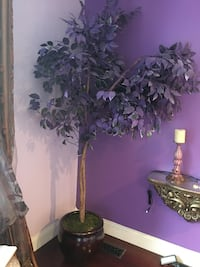 Very nice beautiful gorgeous artificial three purple colored