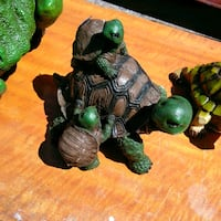 Turtle with Babies pick uo only westside El Paso, 79932