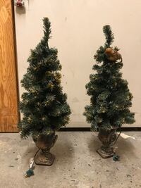 Two mini holiday trees
