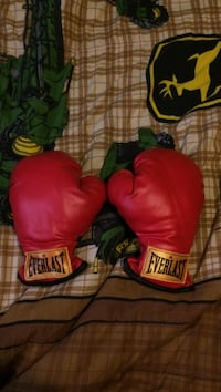 red everlast leather boxing gloves Rocky View No. 44