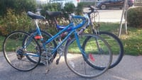 Two bikes for 50 CAD Toronto, M4C 1L4