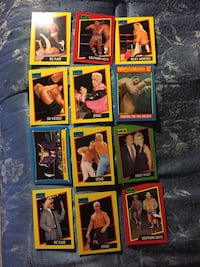 1987 and 1991 wcw cards over a 100 Maryville, 37803