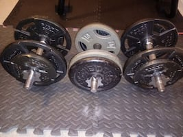 3 dumbbell bars and weight plates
