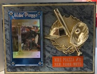 Mike Piazza New York Mets Dunn, 28334