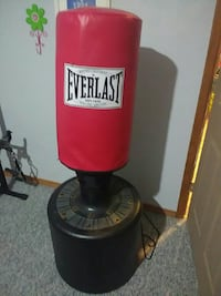red and black Everlast freestanding heavy bag