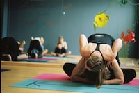 Private Yoga Sessions 3 Pack (3 half hour privates) 21236 or for in person or AV call nationwide/international. Baltimore, 21236