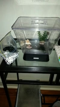Betta LED fish tank.  Cambridge, N1T 1C6