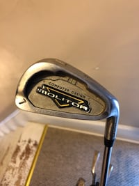 Spalding molitor golf clubs 3-9 irons, pitching wedge, and putter. Comes w golf bag Herkimer, 13350