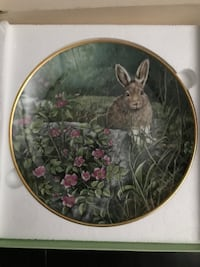 Decorative Bunny Plate Burlington, L7M 3C3