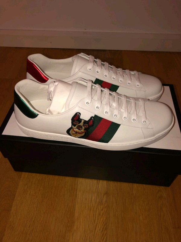 buy online 5357a 55008 Used Gucci Ace skor for sale