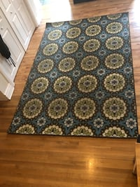 Indoor/Outdoor Area Rug Chicago, 60647