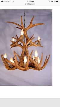 Faux Deer chandelier Ozark, 72949