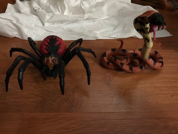 Large Spider and Snake 6e3062e2-abc2-4f02-bbce-69523e2014bc