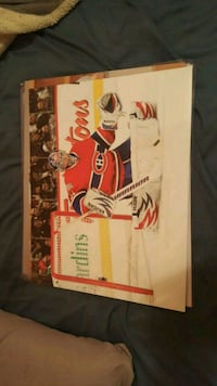 Montreal Canadiens goalie painting Mississauga, L5E