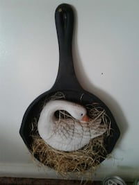hanging fry pan with swan in it 380 mi