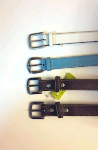 NEW and LIGHTLY USED: Imported Belts Delta, V4C 2S8