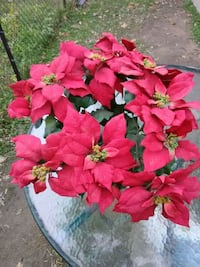 "Nearly Natural 6077-S2 24"" Poinsettia Artificial P"