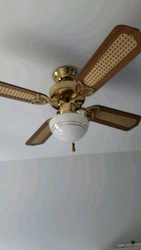 Fan with three lights