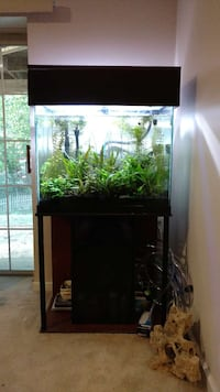 Complete Freshwater 56 gallon aquarium Woodbridge, 22192